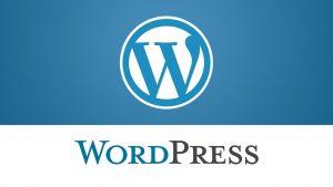 Wordpress helpdesk Nederland website ondersteuning nu nodig?
